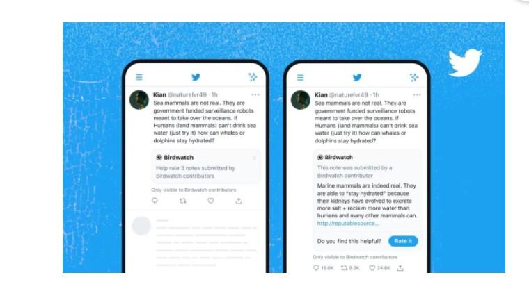 Twitter Birdwatch 4