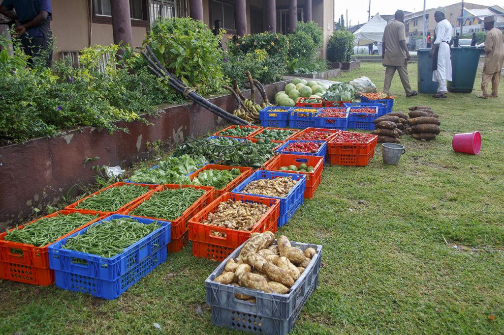 Amana Open Market Abuja 004